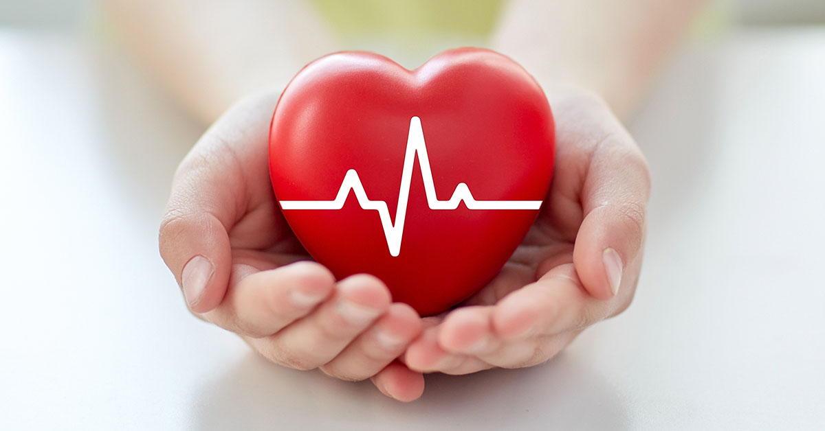 health, medicine, people and cardiology concept - close up of hand with cardiogram on small red heart; blog: heart-healthy habits for the new year